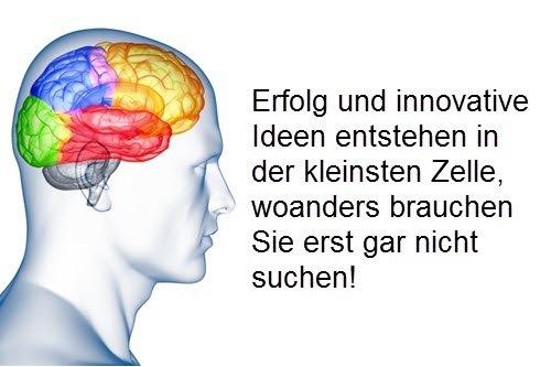 Die Faszination Gehirn